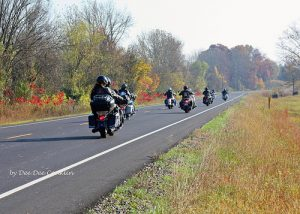 Motorcycles on Road